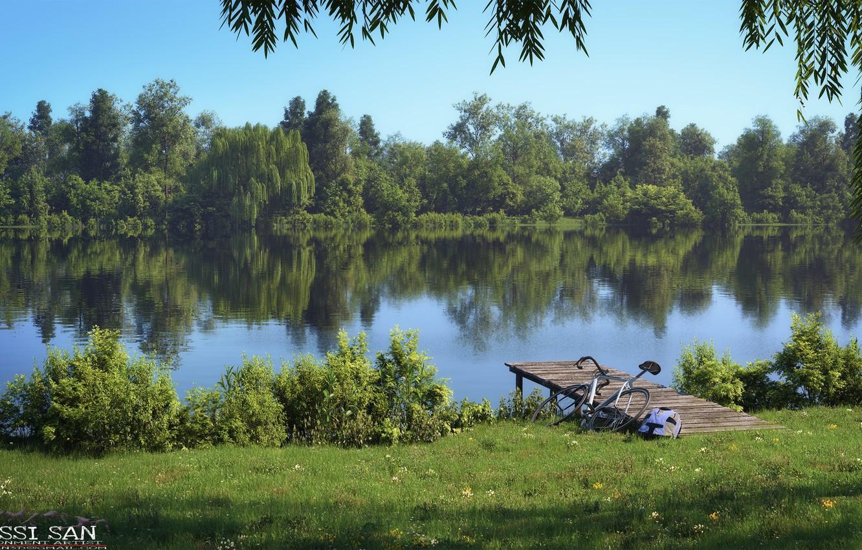Photo wallpaper bike, vegetation, the bridge, pond, amsterdamse park