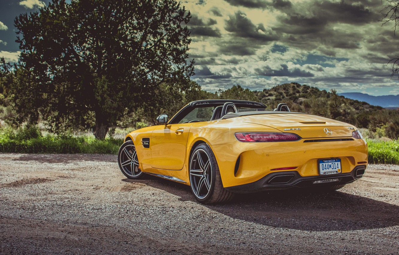 Photo wallpaper car, Roadster, Mercedes, logo, yellow, vegetation, Mercedes Amg, Mercedes Amg Gt Roadster, Mercedes Amg Gt