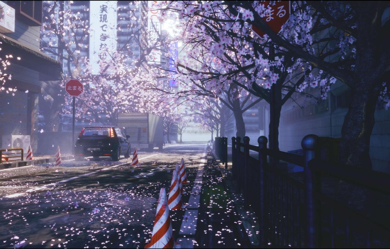 Photo wallpaper auto, flowers, the city, street, spring, Sakura
