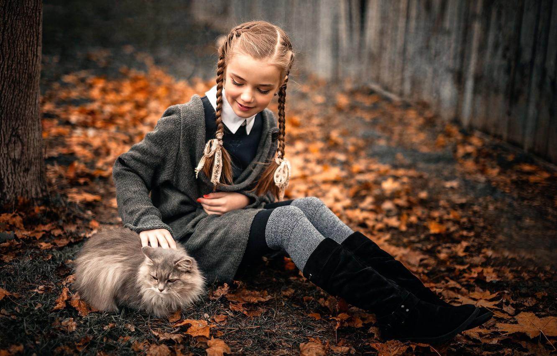 Photo wallpaper autumn, cat, girl, the beauty, Sergey Piltnik