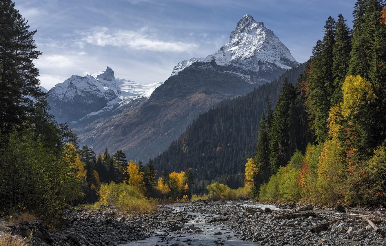 Photo wallpaper autumn, forest, mountains, The Caucasus, Dombai gorge, Top Bellaca