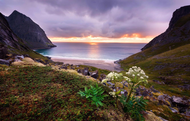 Photo wallpaper sea, beach, leaves, clouds, sunset, stones, rocks, hills, shore, vegetation, plant, the evening, horizon, surf