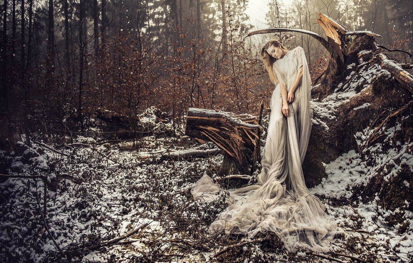Photo wallpaper forest, girl, snow, pose, the situation, dress, snag, VOODOO Wonderland