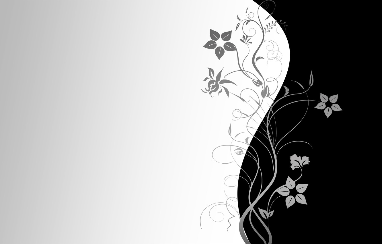 Photo wallpaper flowers, Wallpaper, pattern, vector, texture, wallpaper, black background, grey background