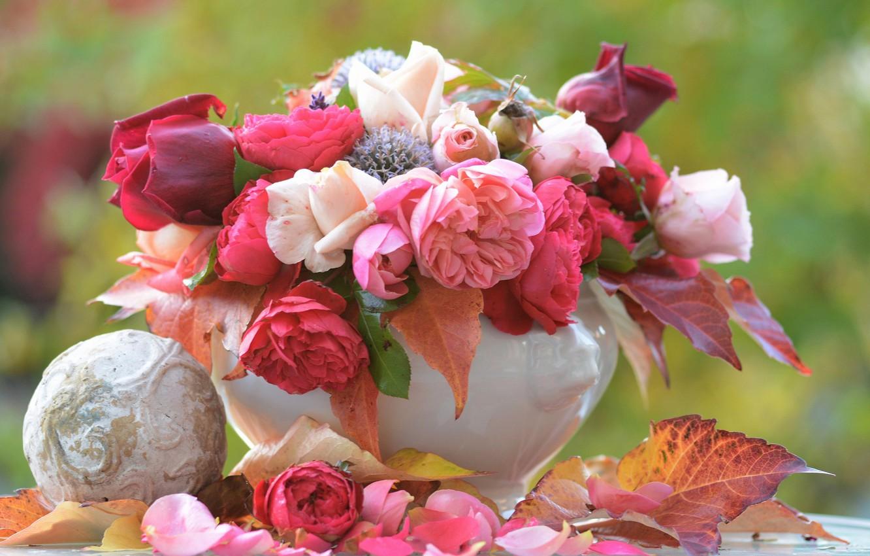 Photo wallpaper leaves, roses, bouquet, petals