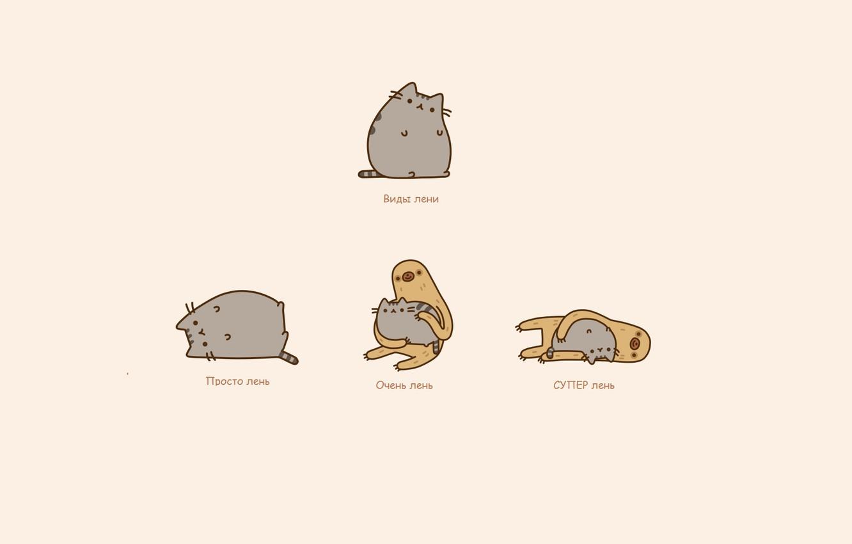 Photo wallpaper cat, mood, humor, sloth, laziness