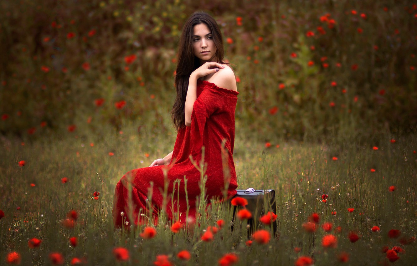 Photo wallpaper field, girl, flowers, Maki, brunette, suitcase, red dress