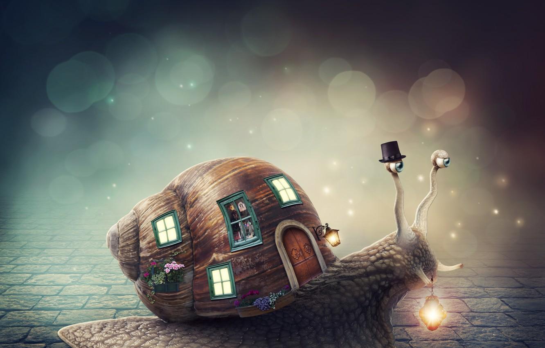 Photo wallpaper flowers, Windows, snail, hat, lantern, house