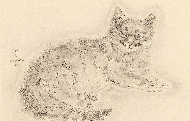 Photo wallpaper look, legs, tail, fluffy, 1929, Tsuguharu Foujita, The Book Of Cats