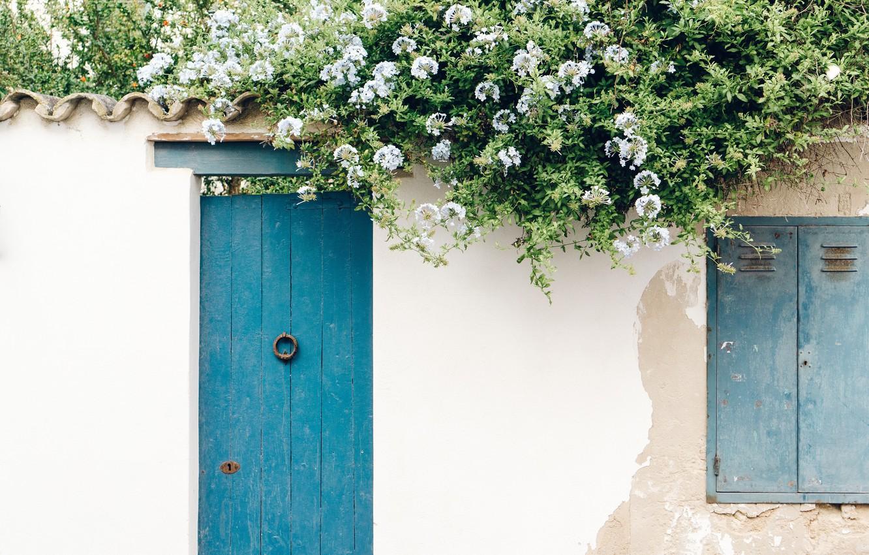 Photo wallpaper flowers, wall, the door, wall, flowers, door