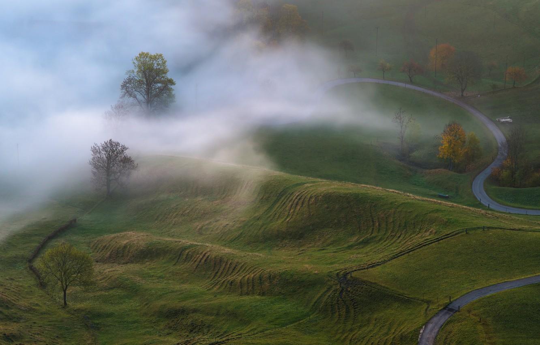 Photo wallpaper autumn, trees, nature, fog, morning, meadows