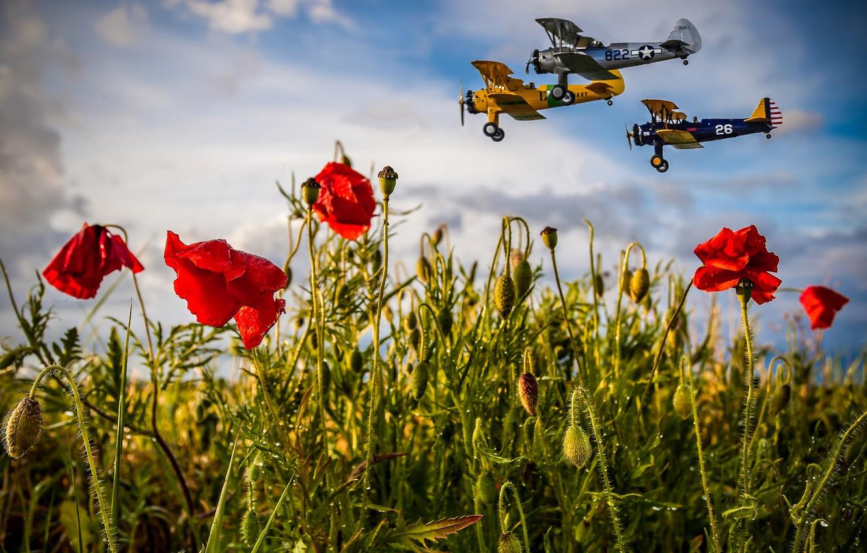 Обои aircraft, fields, sky. Абстракции foto 9