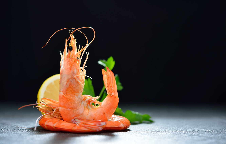 Photo wallpaper greens, lemon, shrimp, seafood