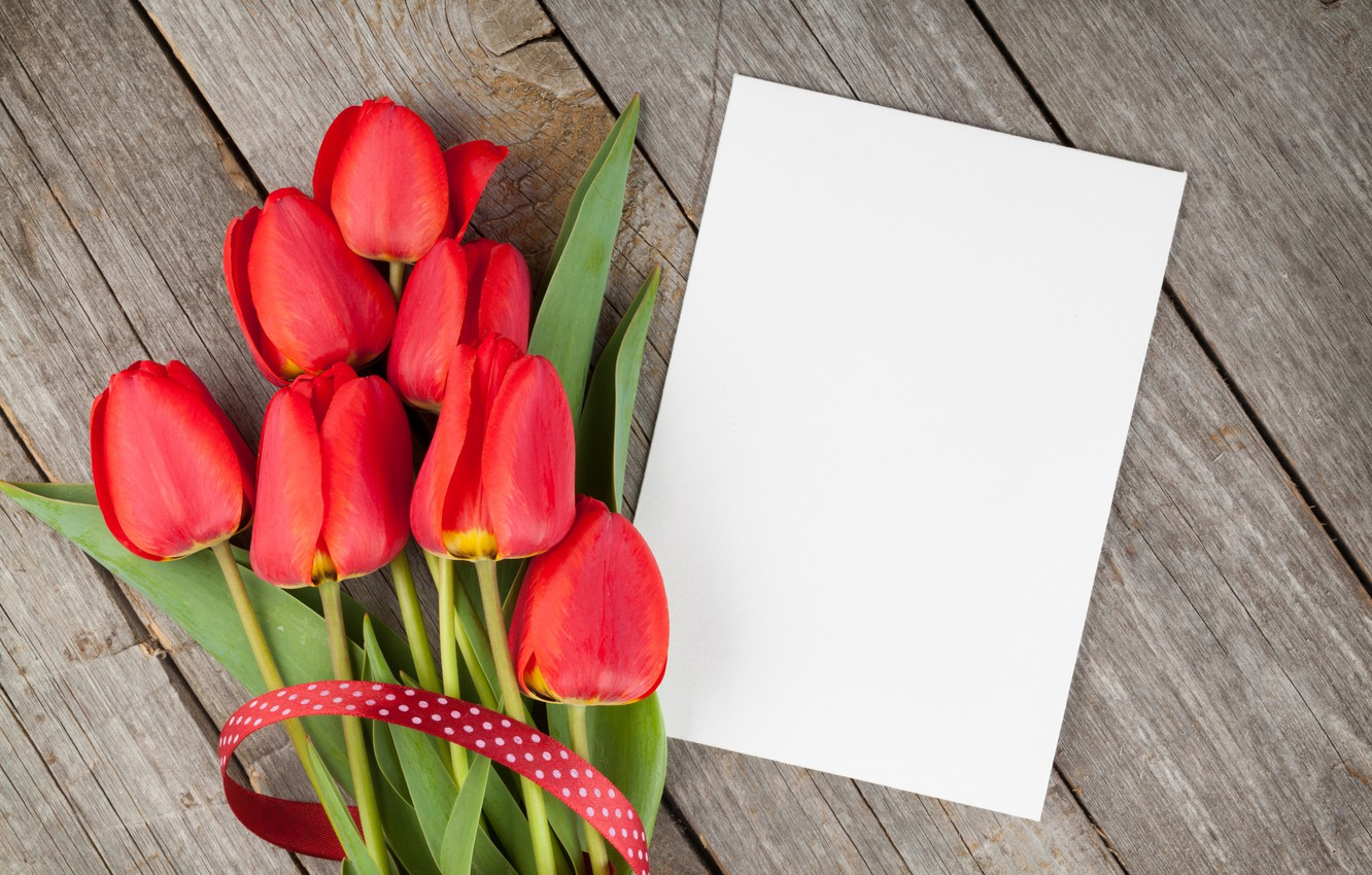 Photo wallpaper tulips, red, wood, flowers, tulips, red tulips