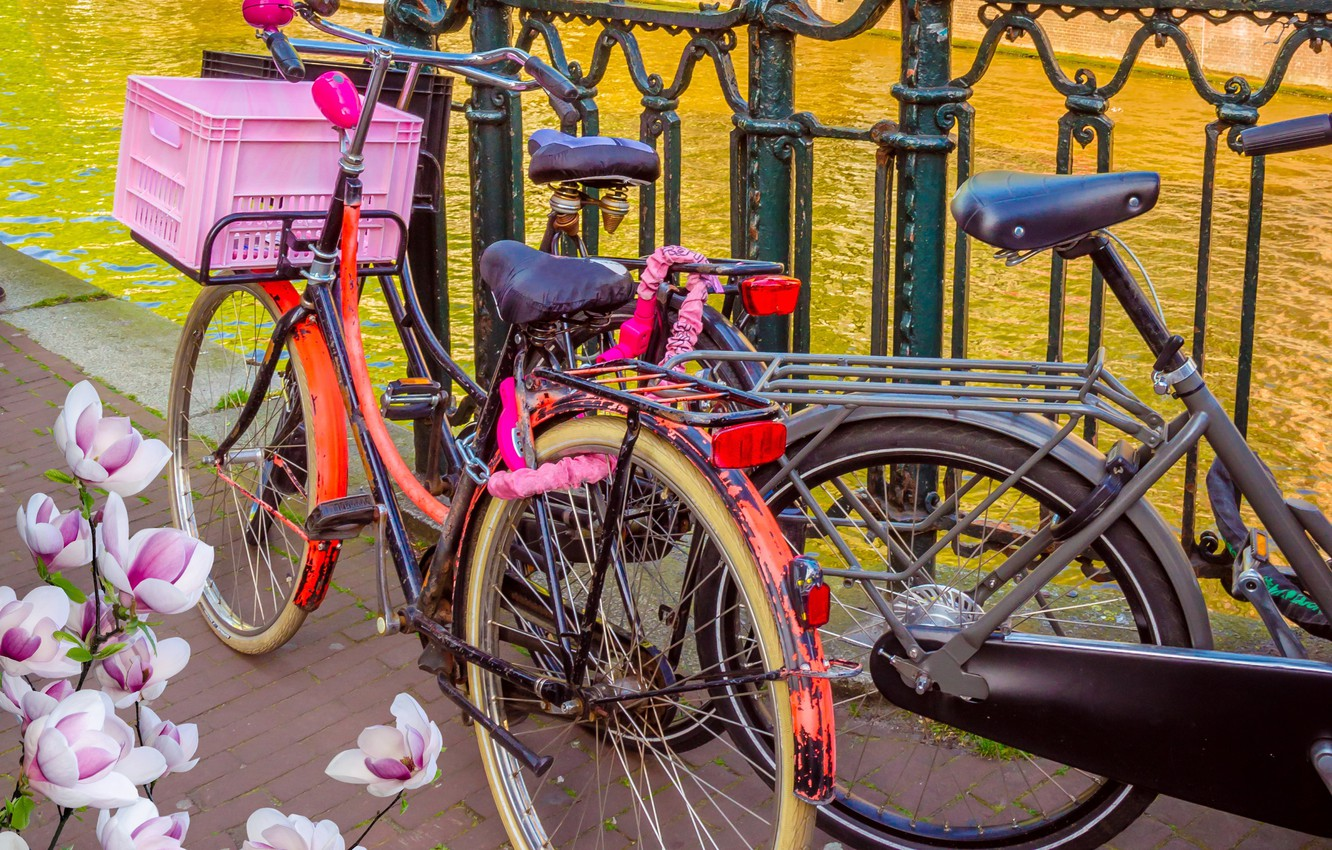 Photo wallpaper bike, river, spring, Amsterdam, bicycle, flowering, bike, blossom, Amsterdam, flowers, old, spring, buildings, Netherlands, canal