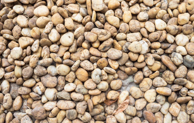 Photo wallpaper beach, pebbles, stones, background, white, white, beach, texture, marine, sea, pebbles