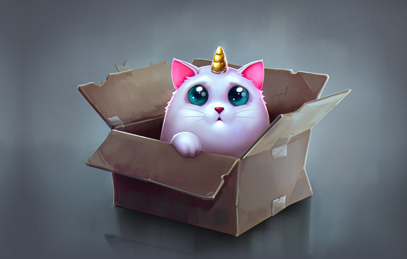 Photo wallpaper anime, art, box, children's, Katya Art, Cat Unicorn