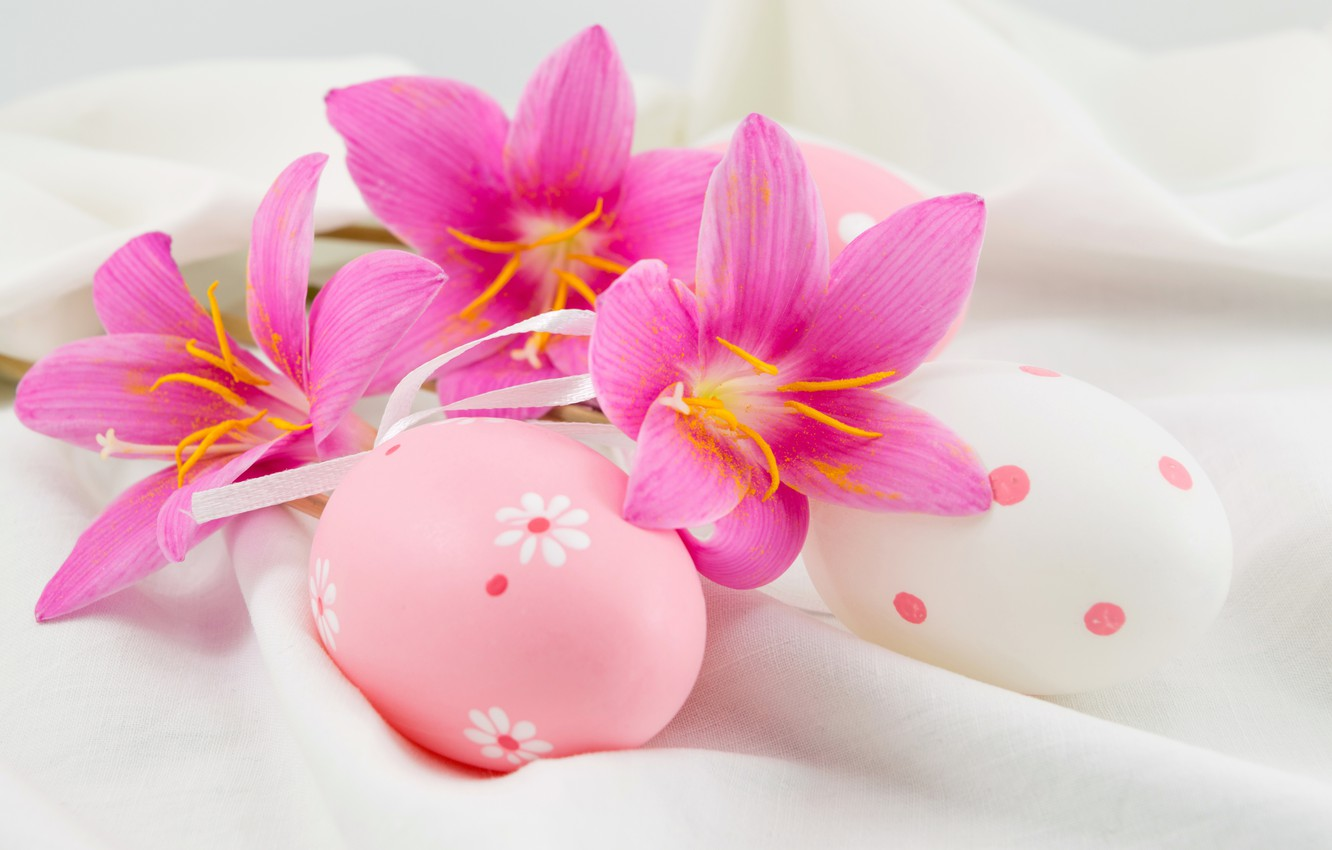 Photo wallpaper flowers, Easter, pink, flowers, Easter, eggs, decoration, Happy, the painted eggs