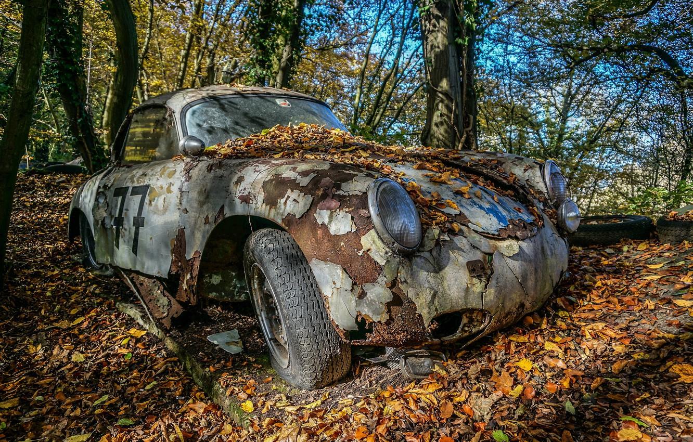 Photo wallpaper machine, forest, leaves, scrap