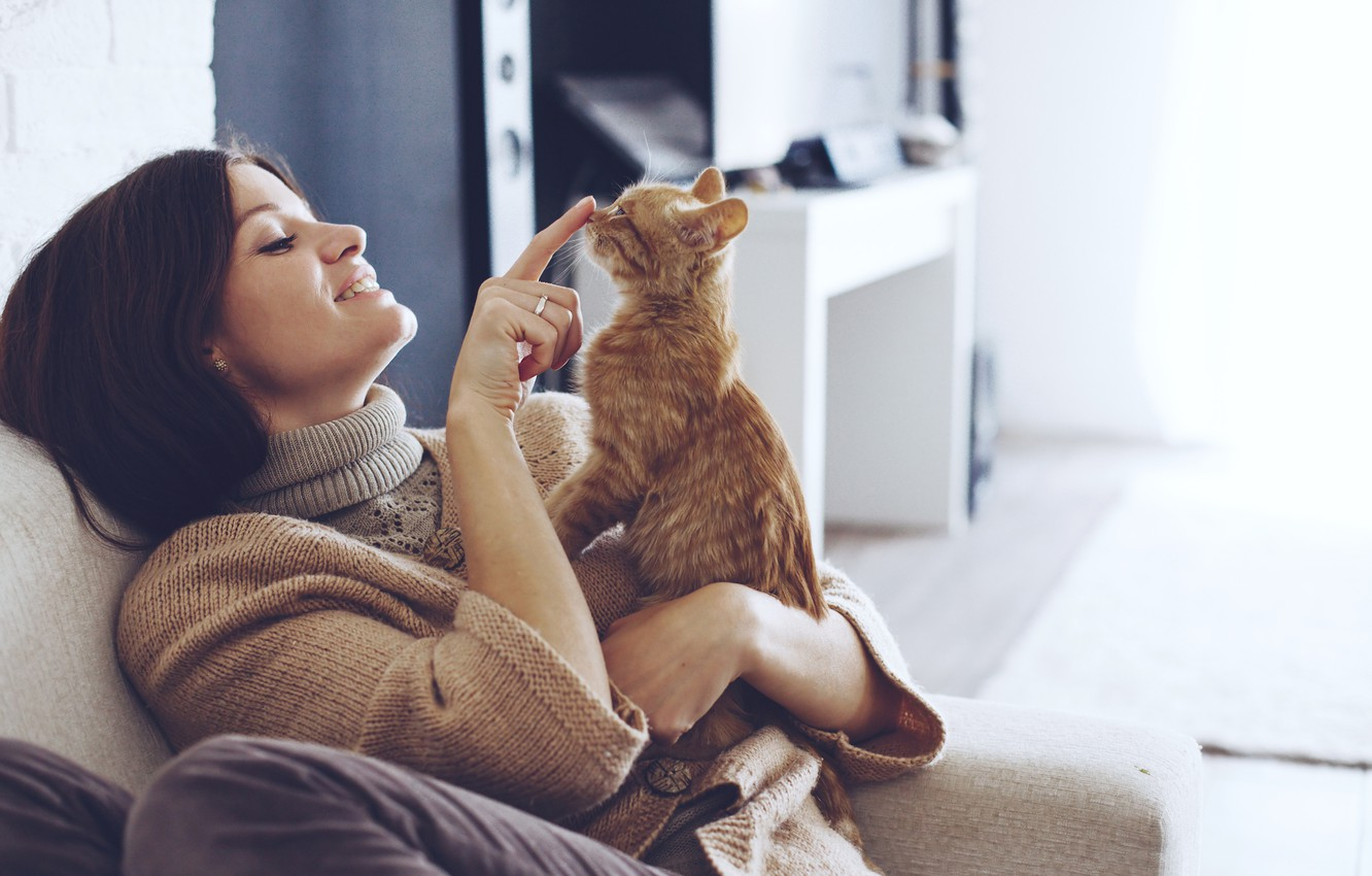 Photo wallpaper girl, brunette, red, hairstyle, finger, kitty, sitting, on the couch, cute, sweater