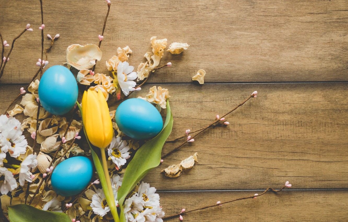 Photo wallpaper flowers, chamomile, spring, Easter, wood, flowers, spring, Easter, eggs, decoration, Happy, tender, the painted eggs