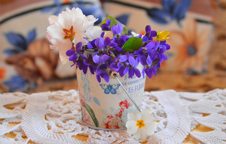 Photo wallpaper Flowers, Flowers, Pot, Flowers