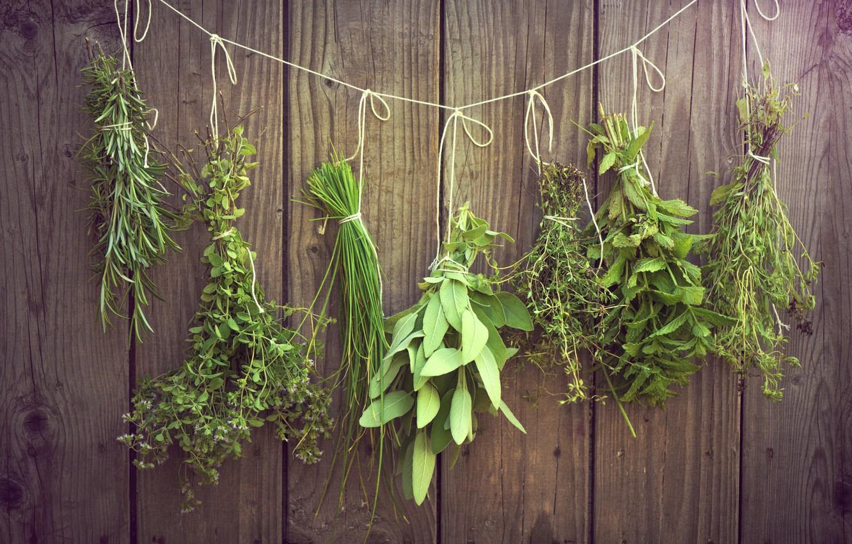 Photo wallpaper greens, grass, thread, hang, bundles