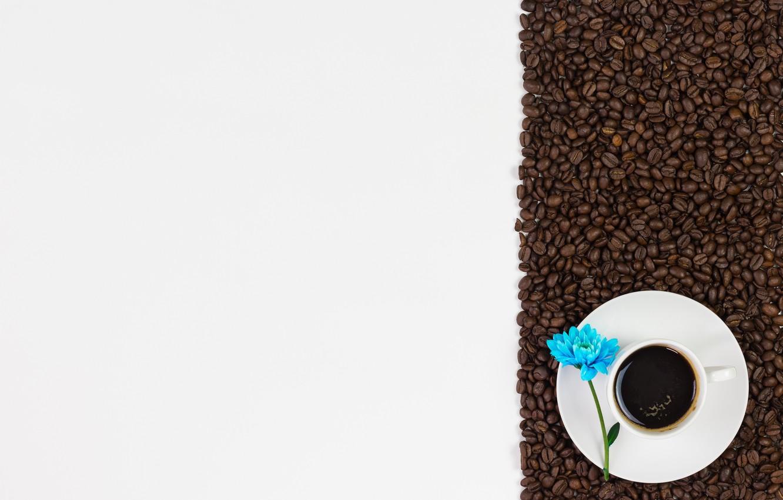 Photo wallpaper flowers, coffee, grain, love, flowers, cup, romantic, beans, coffee
