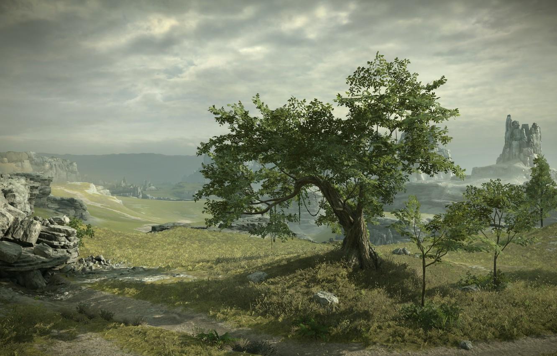 Photo wallpaper tree, rocks, view, Shadow of the Colossus, In the shadow of the colossus, panormama