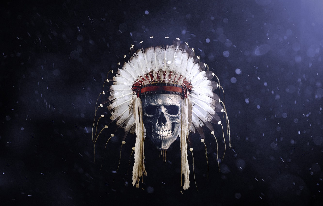 Photo wallpaper skull, feathers, Indian