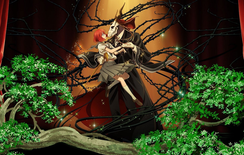Photo wallpaper spikes, two, Mahou Tsukai no Yome, Bride of the sorcerer