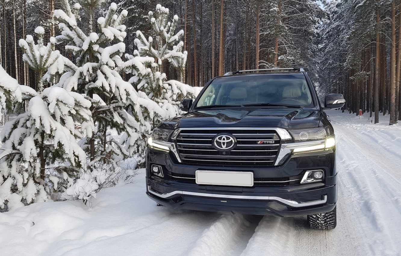 Photo wallpaper winter, forest, toyota LC 200