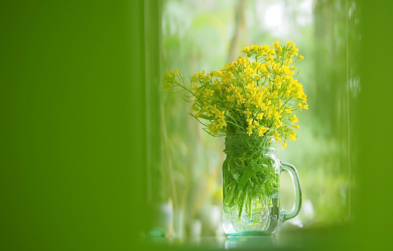 Photo wallpaper flowers, color, Bank