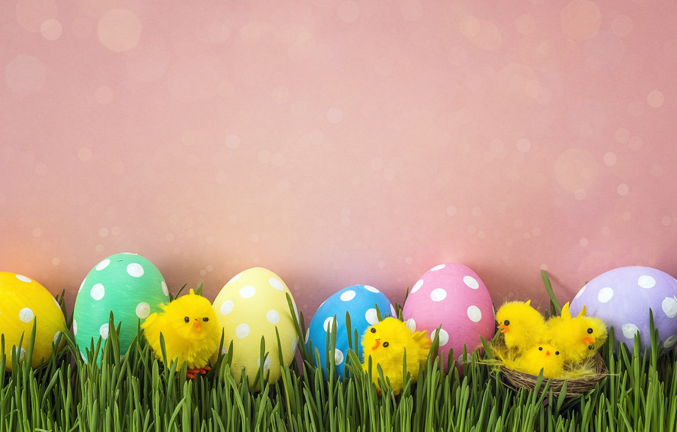 Photo wallpaper grass, chickens, spring, Easter, pink, spring, Easter, eggs, decoration, Happy, the painted eggs