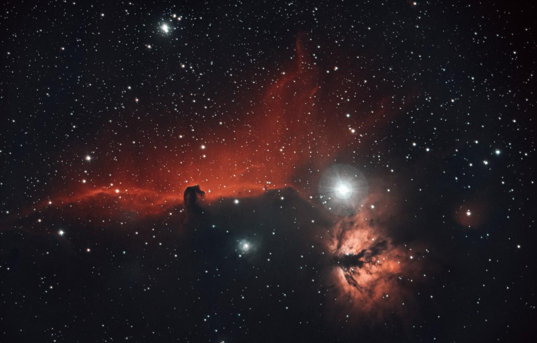 Photo wallpaper space, stars, nebula, horse head, Horsehead