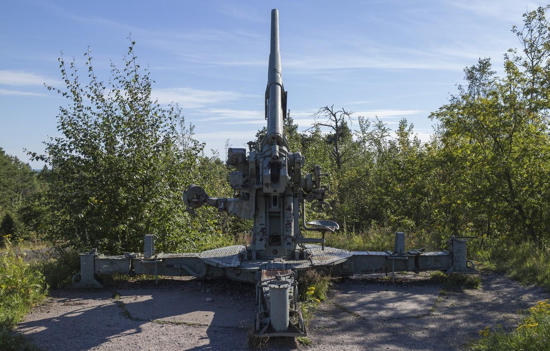 Photo wallpaper nature, gun, anti-aircraft gun