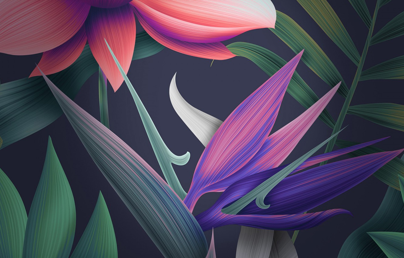Photo wallpaper 1920x1080, mate, floral, huawei, 10_stock