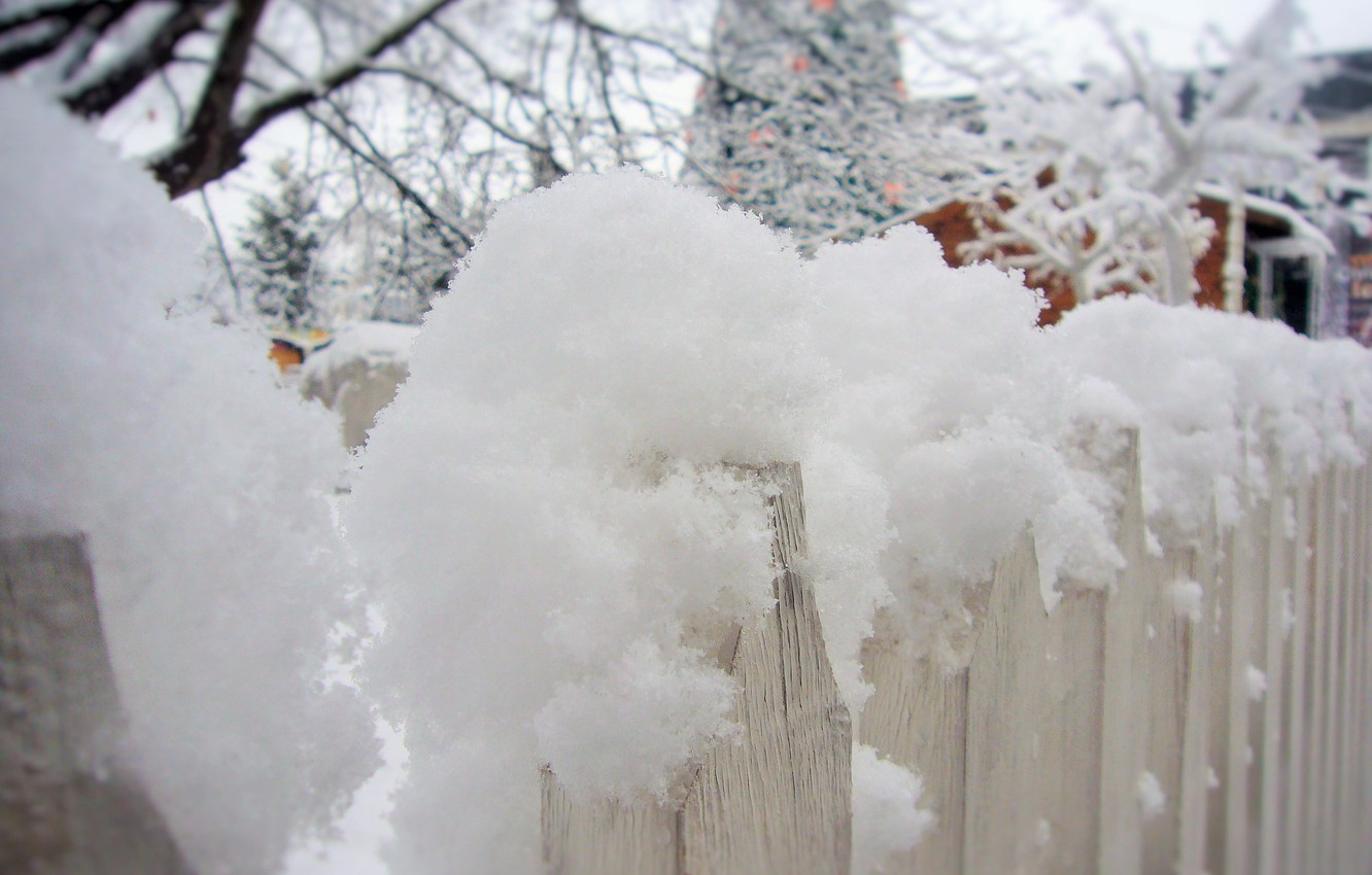 Photo wallpaper winter, snow, mood, the fence