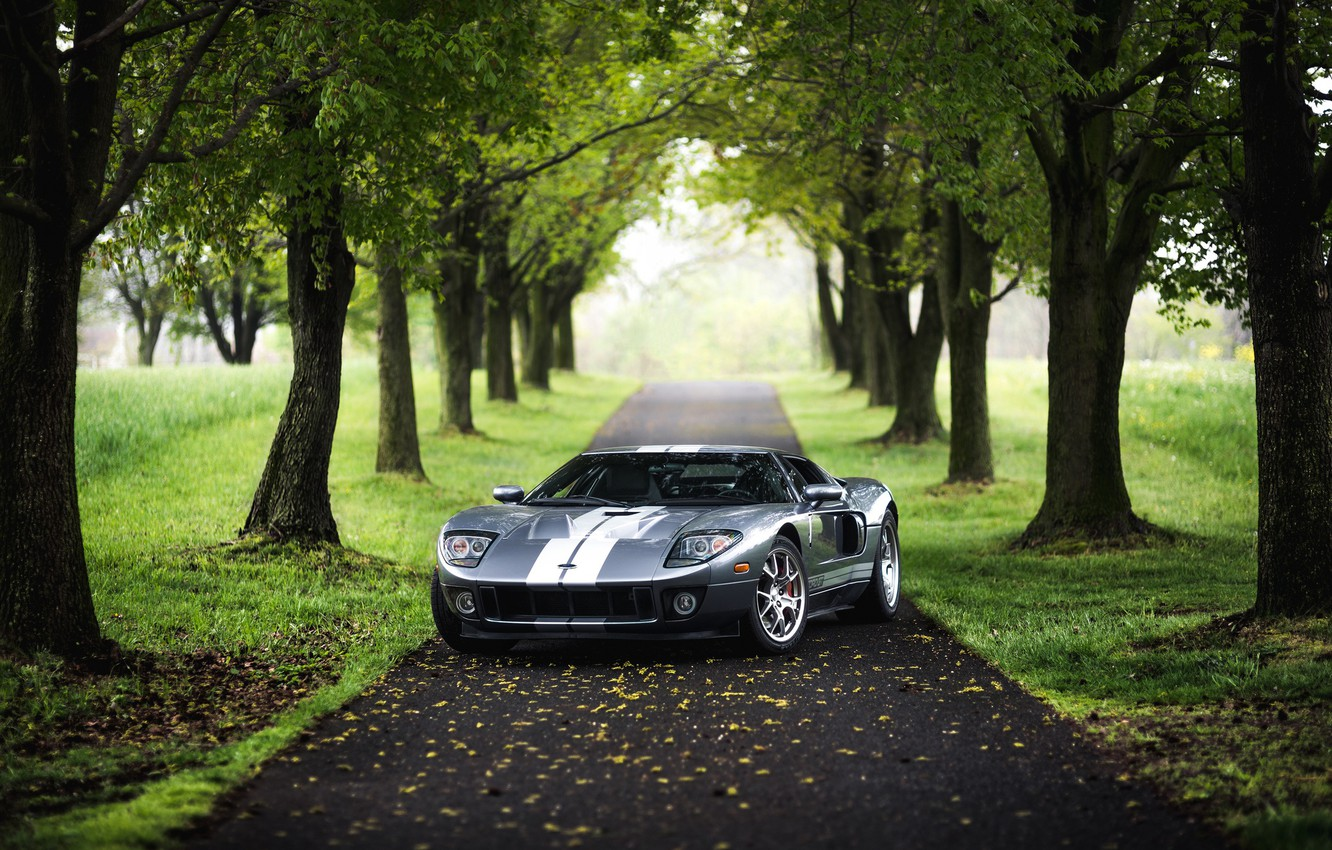 Photo wallpaper Ford, Silver, American Muscle, Lane