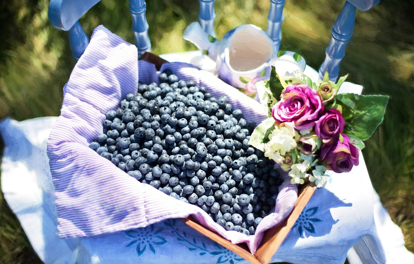 Photo wallpaper flowers, berries, picture, summer, still life, fresh, painting, still life, blueberry, blueberries, berries