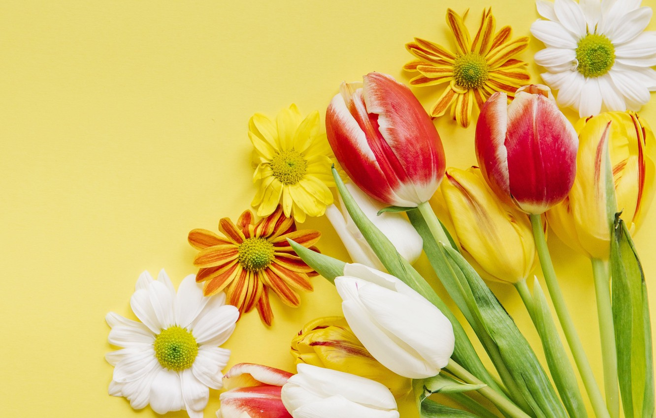 Photo wallpaper flowers, spring, colorful, Easter, tulips, wood, flowers, tulips, spring, Easter, eggs, decoration, Happy, the painted …