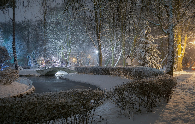 Photo wallpaper winter, snow, trees, bridge, pond, Park, the bushes