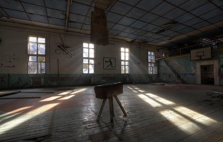 Photo wallpaper horse, sport, hall