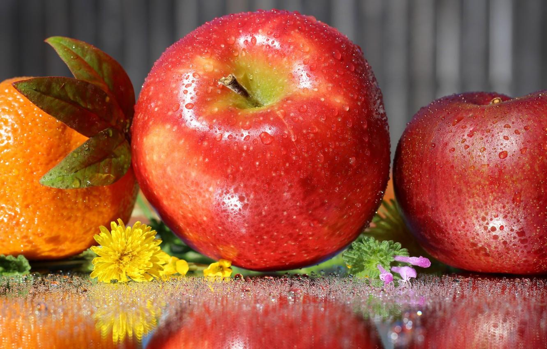 Photo wallpaper drops, flowers, apples, citrus