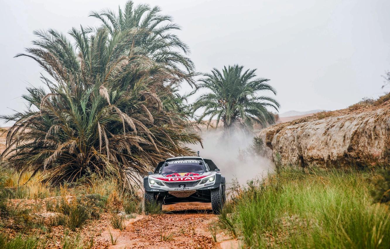 Photo wallpaper Sport, Speed, Race, Peugeot, Lights, Red Bull, Rally, Rally, RedBull, DKR, 3008, Peugeot 3008 DKR