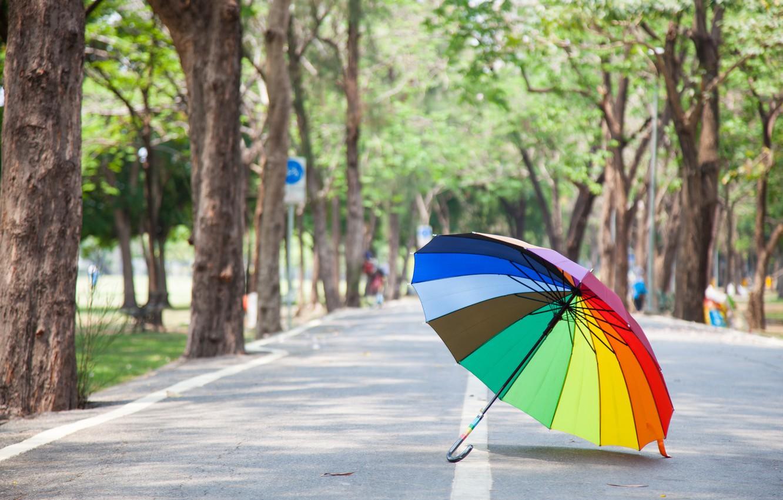 Photo wallpaper road, summer, trees, Park, rainbow, umbrella, colorful, rainbow, summer, alley, umbrella, park