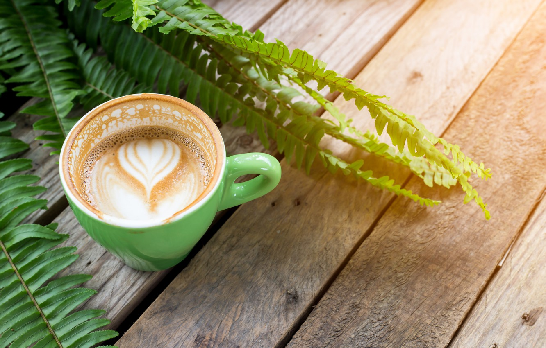 Photo wallpaper heart, foam, capuchino, fern leaves