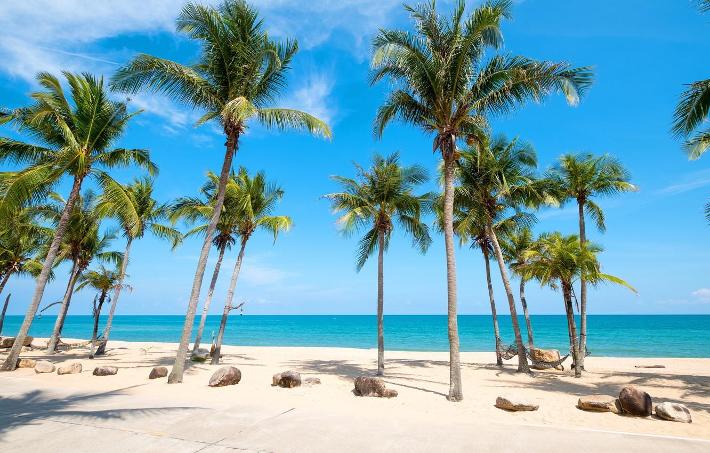 Photo wallpaper nature, Beach, Palma, Summer, Tropics