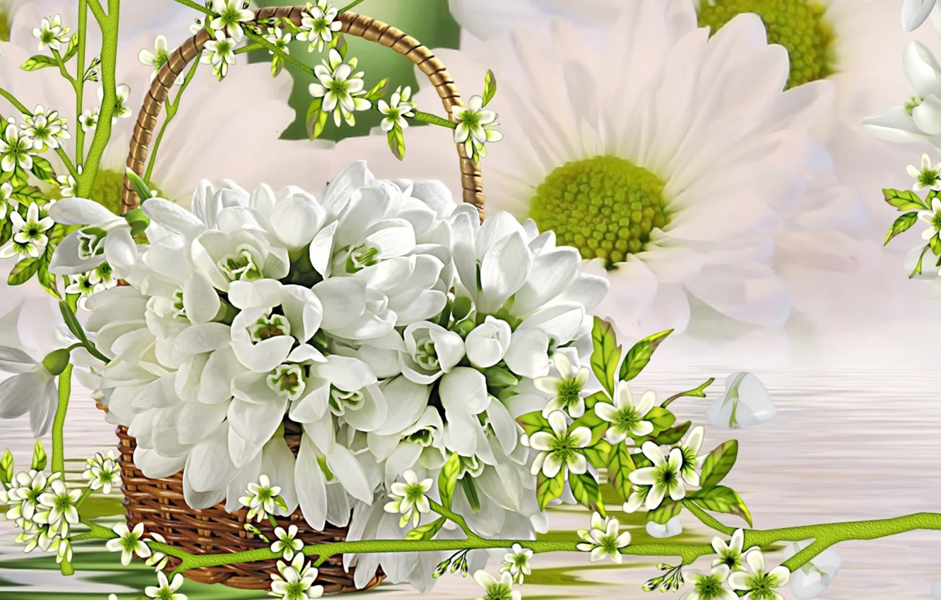 Photo wallpaper greens, rendering, background, collage, spring, snowdrops, picture, white flowers, a basket of flowers