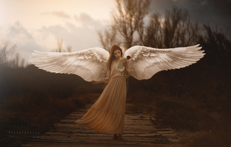 Photo wallpaper girl, wings, Sometimes Araceli